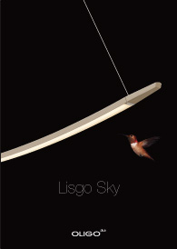 Lisgo Sky Download Flyer