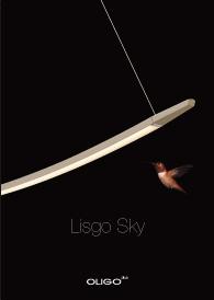 Lisgo Sky Download Flyer
