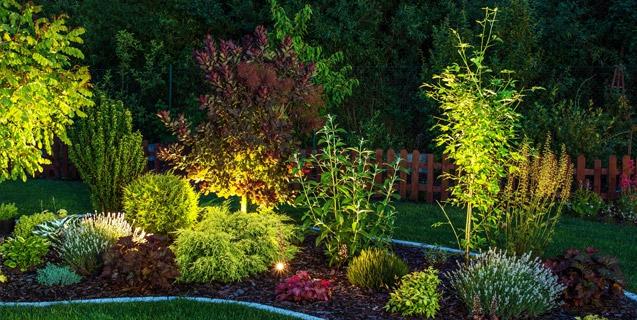 Blick ins Grüne. Licht für den Garten
