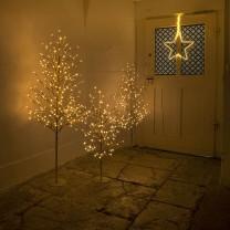 Gold Tree S