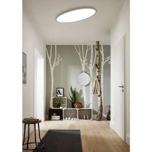 LED Decken-/Wandleuchte VALLEY  - LED Panel mit 36W, warmweiss, kaltweiss und Tageslicht in einem