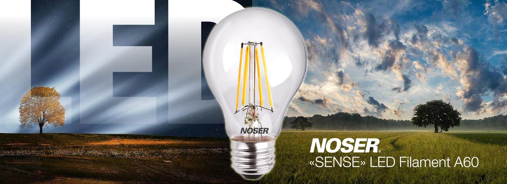"""""""SENSE"""" LED Filament A60"""